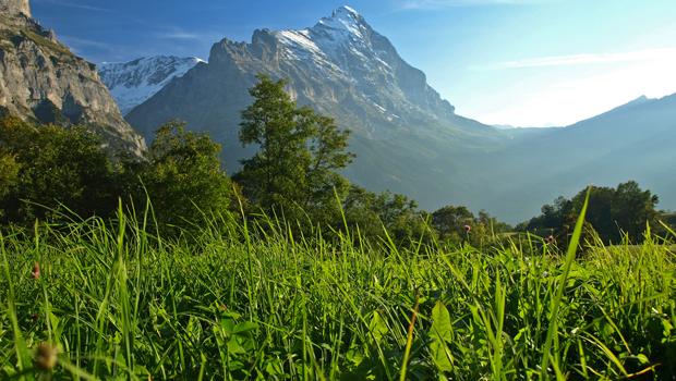 paisaje suizo