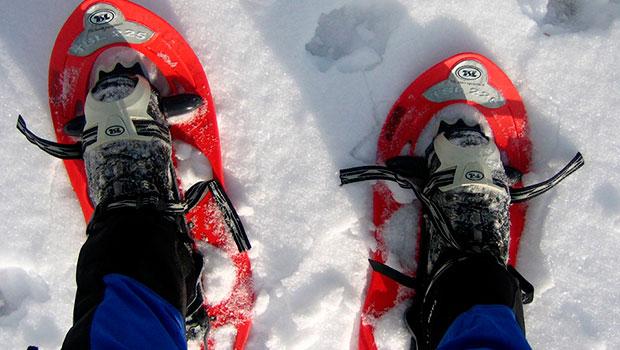 raquetas-en-la-nieve