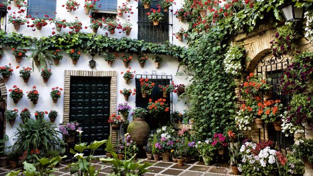 C rdoba viste sus patios de primavera y se rinde al sutil for El jardin de la alegria cordoba