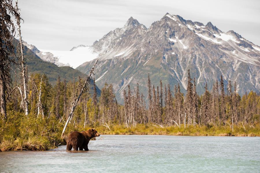 Monte Redoubt, Alaska