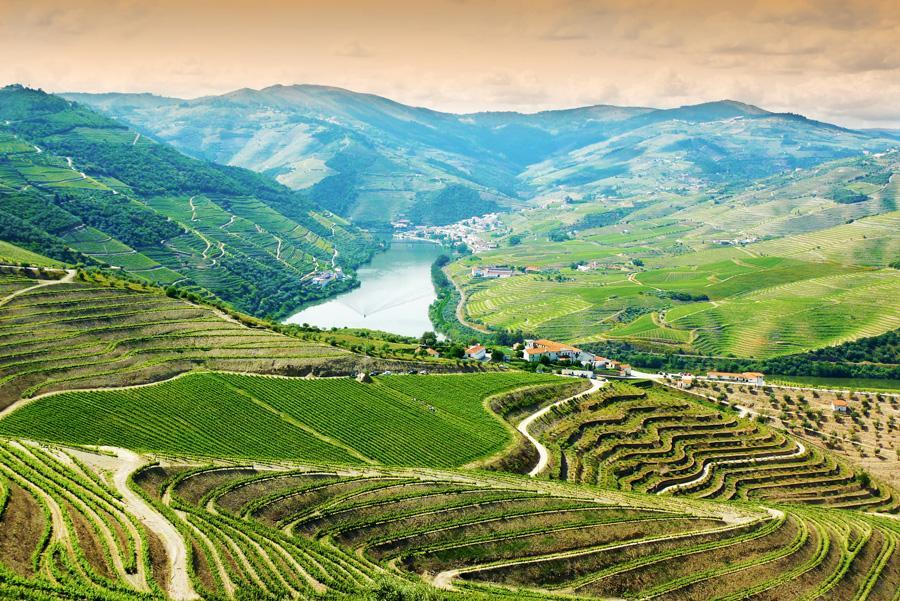 Panorámica de la región vinícola del Alto Douro. Foto: Marcin Krzyzak / Shutterstock.com