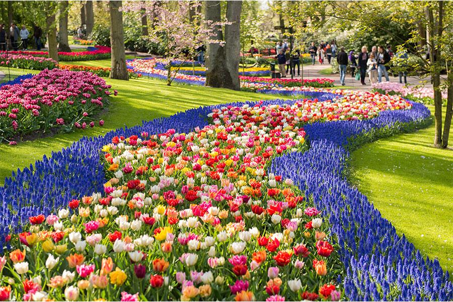Parque Keukenhof, Holanda.