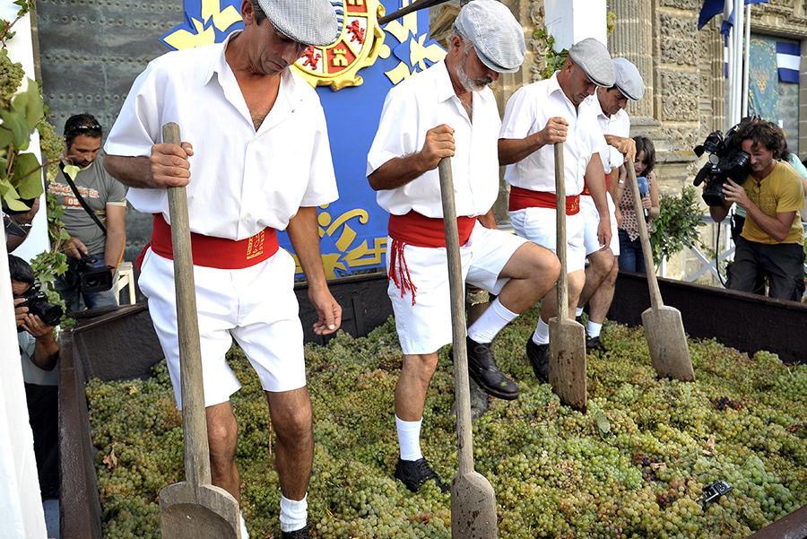 Pisa de la uva, Jerez Foto: Oficina de Turismo de Jerez