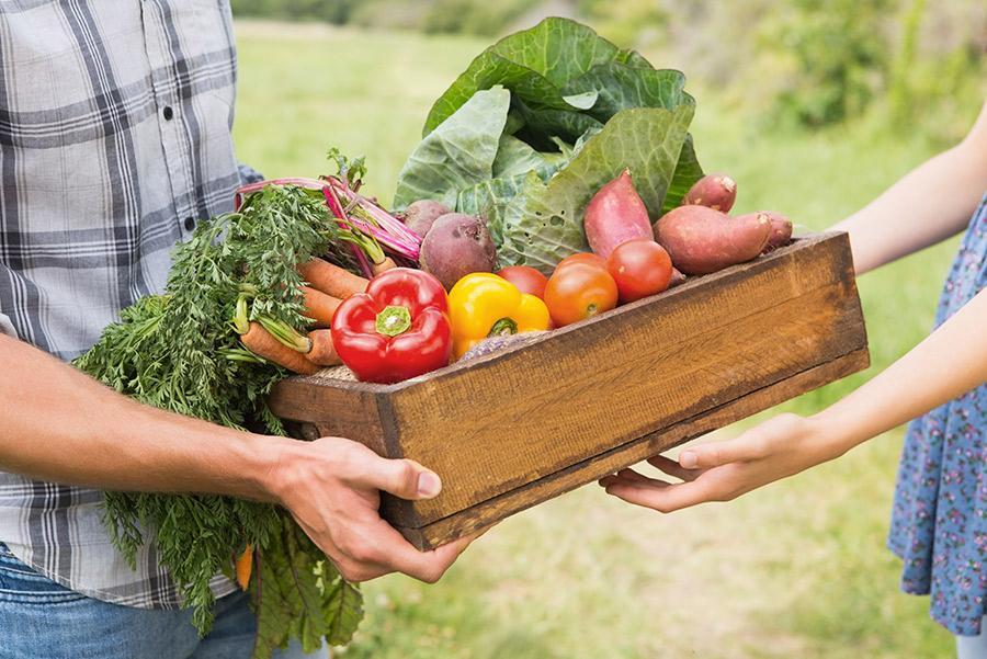 Agricultor con cesta de verduras.