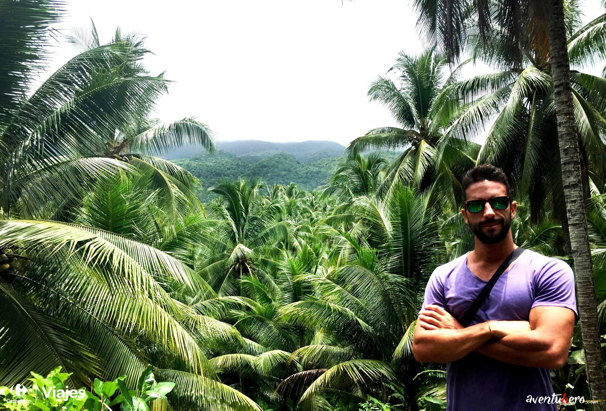 Aventuhero Jamaica Selva de palmeras de frente