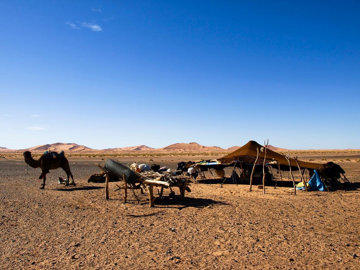 Desierto de Marruecos, Campamento