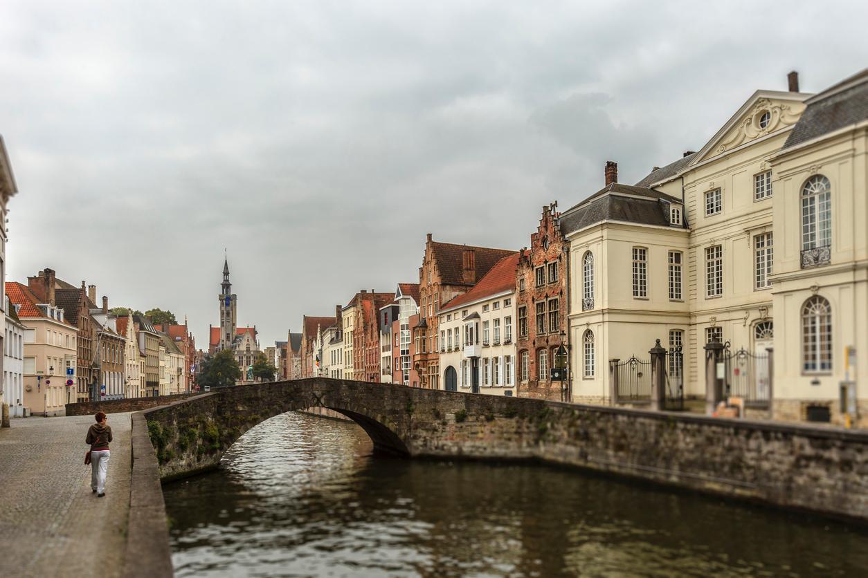 Escapada a Flandes, Vuelo más Hotel