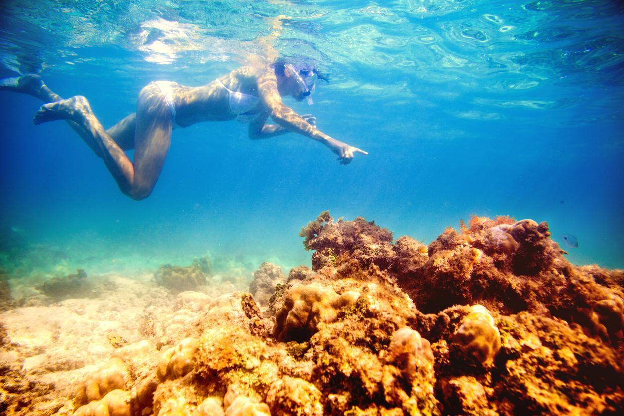 Snorkel en Islas Mauricio