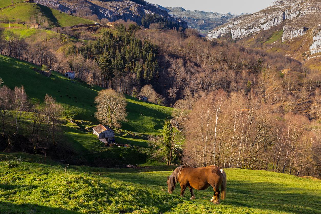 Destinos rurales, Escapada Comarca de los Valles Pasiegos