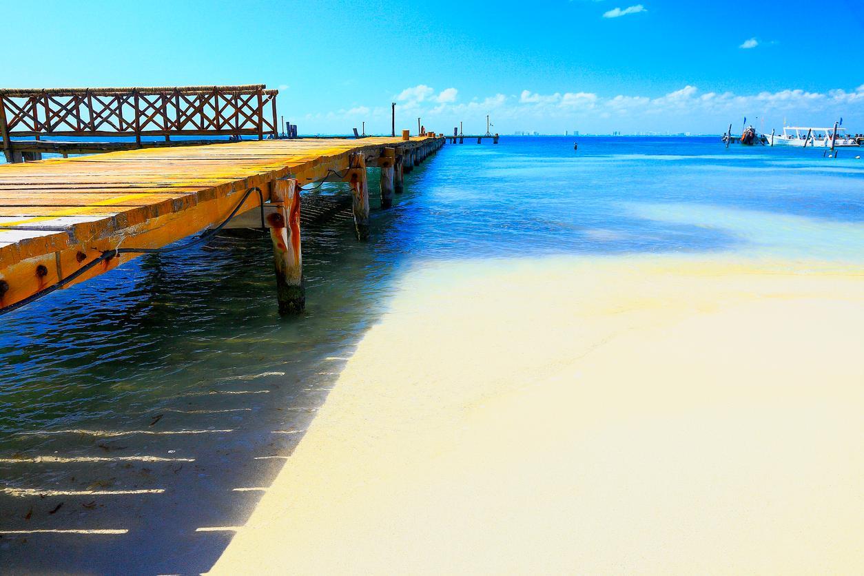 Averigua por qué hay un viaje al Caribe para cada uno