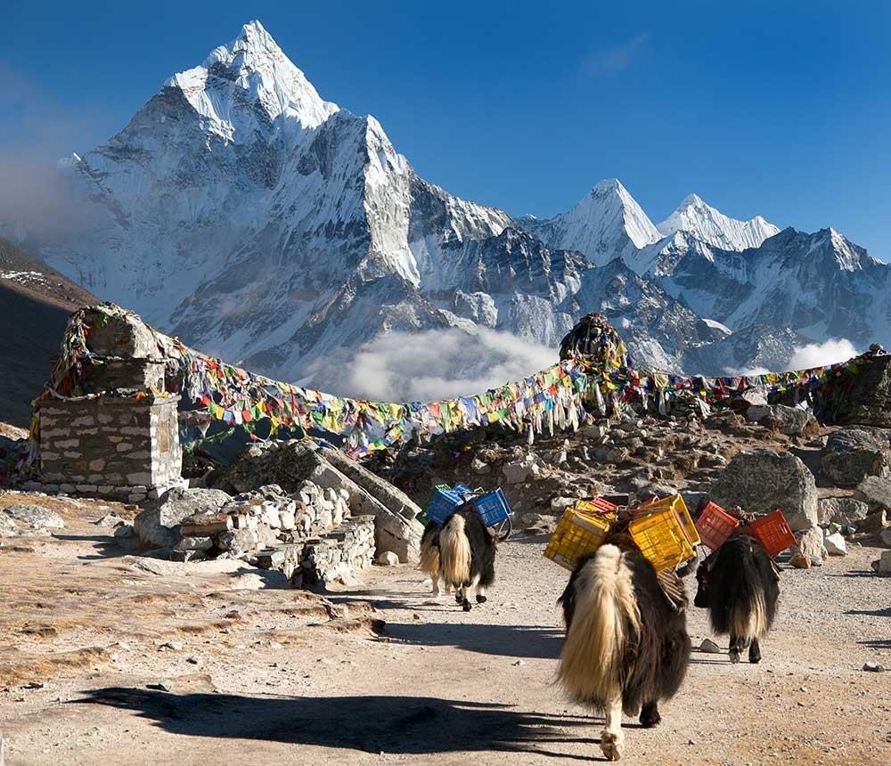 Viaje al Tibet Everest Viajes Carrefour