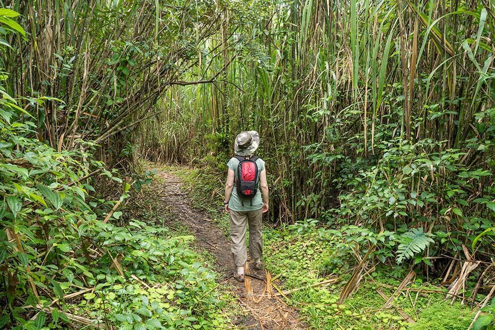 Costa Rica, senderismo