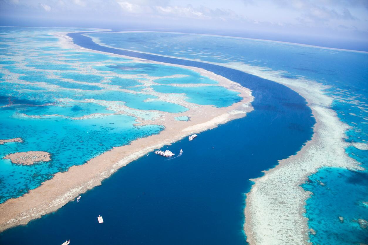 Barrera de Coral Portada baja