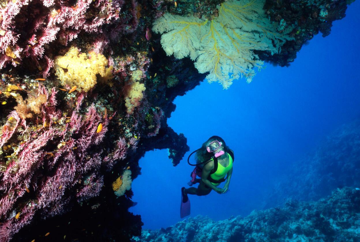Viaje a Australia, Excursión con snorkel