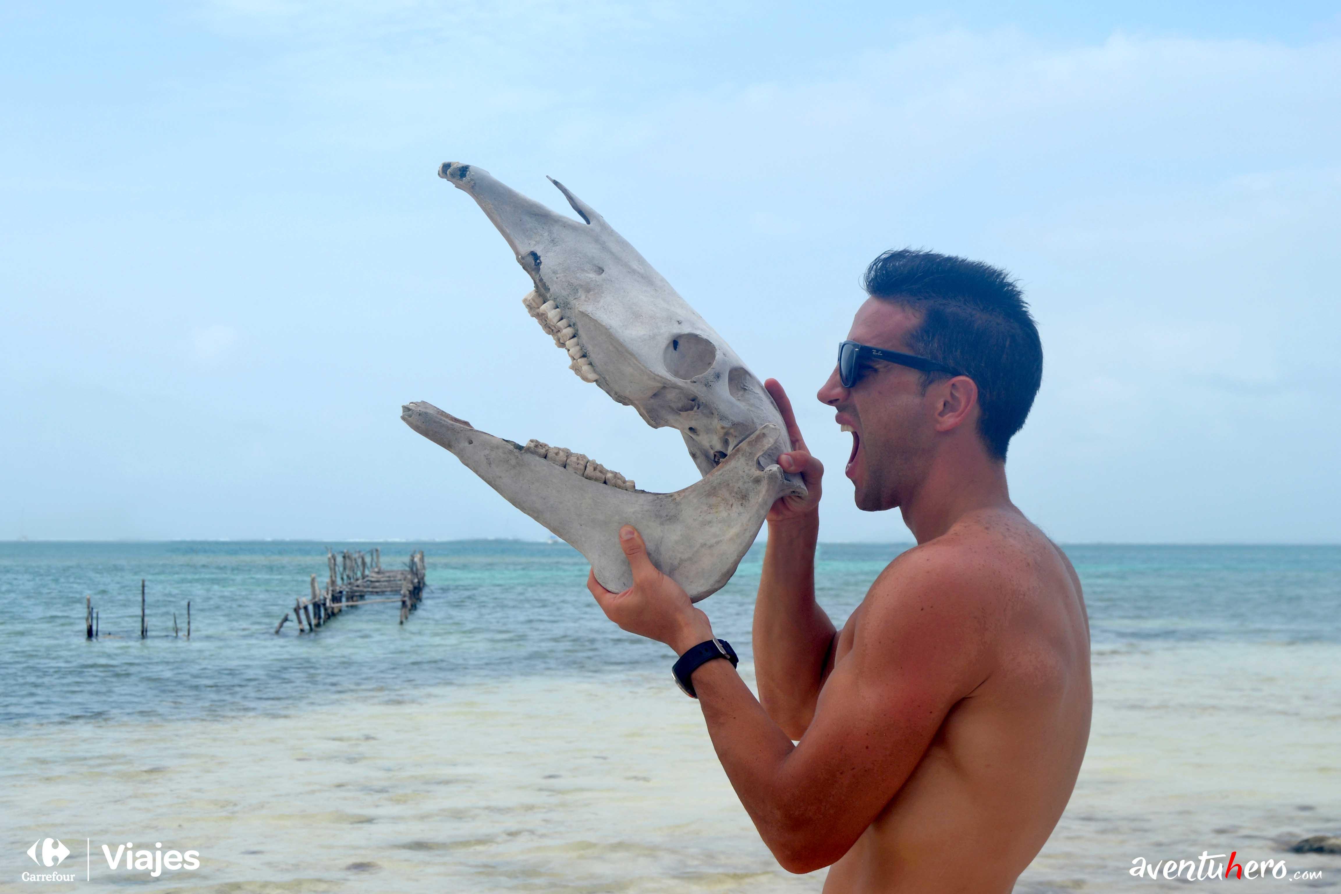 Nunca sabes lo que puedes encontrar en la orilla del mar