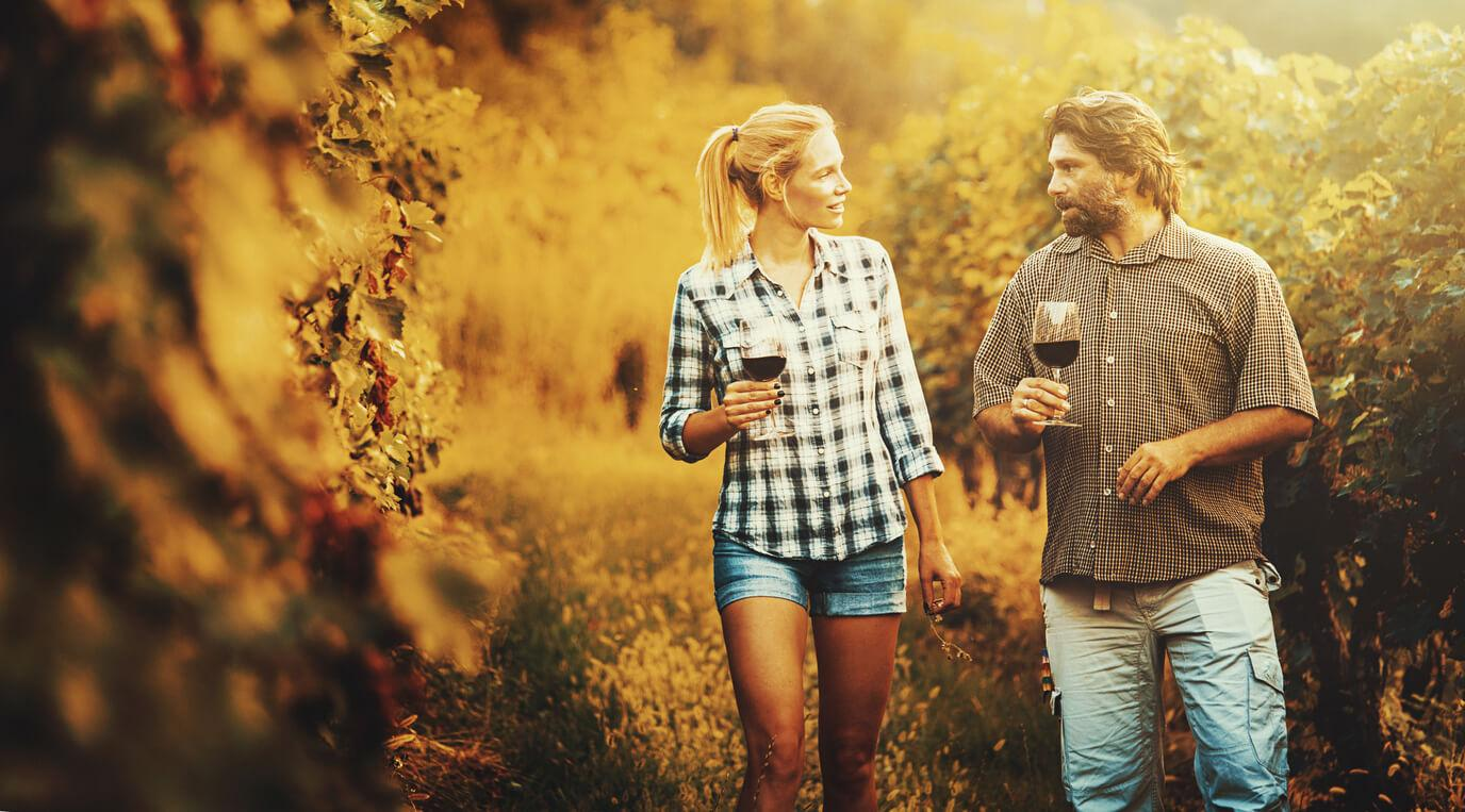Paseo por un viñedo