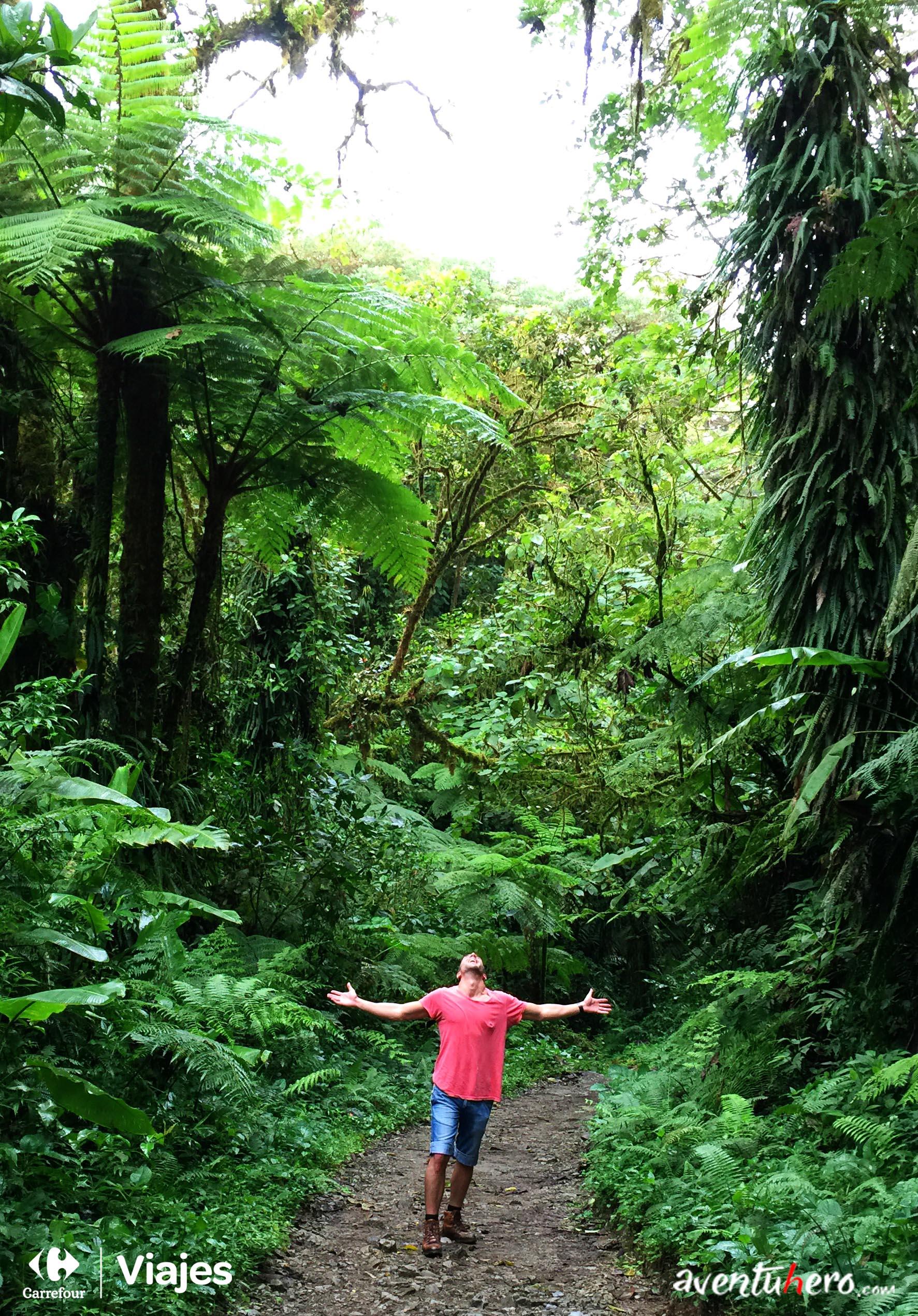 Costa Rica - En el camino de Monteverde