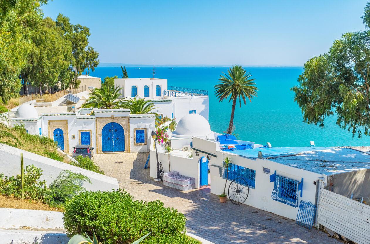 Viaje a Tunez, Paisaje de Túnez