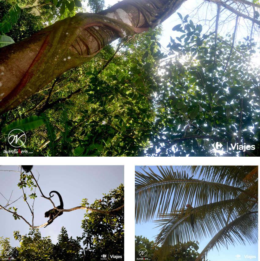 Aventuhero, Costa Rica