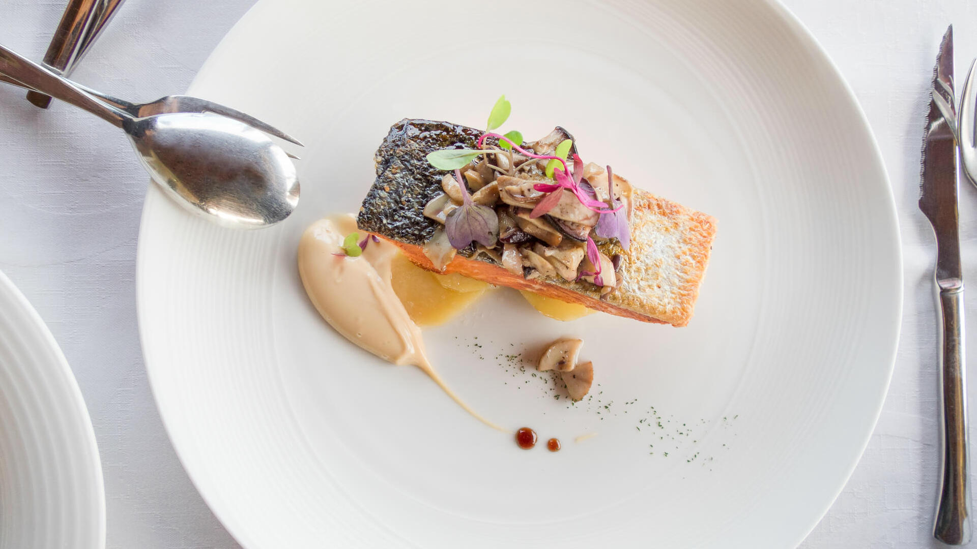 plato gourmet salmon