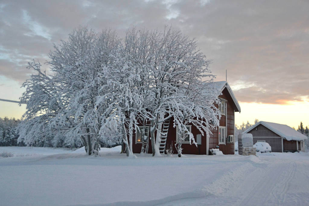 Luna de Miel en Laponia, Casa Laponia