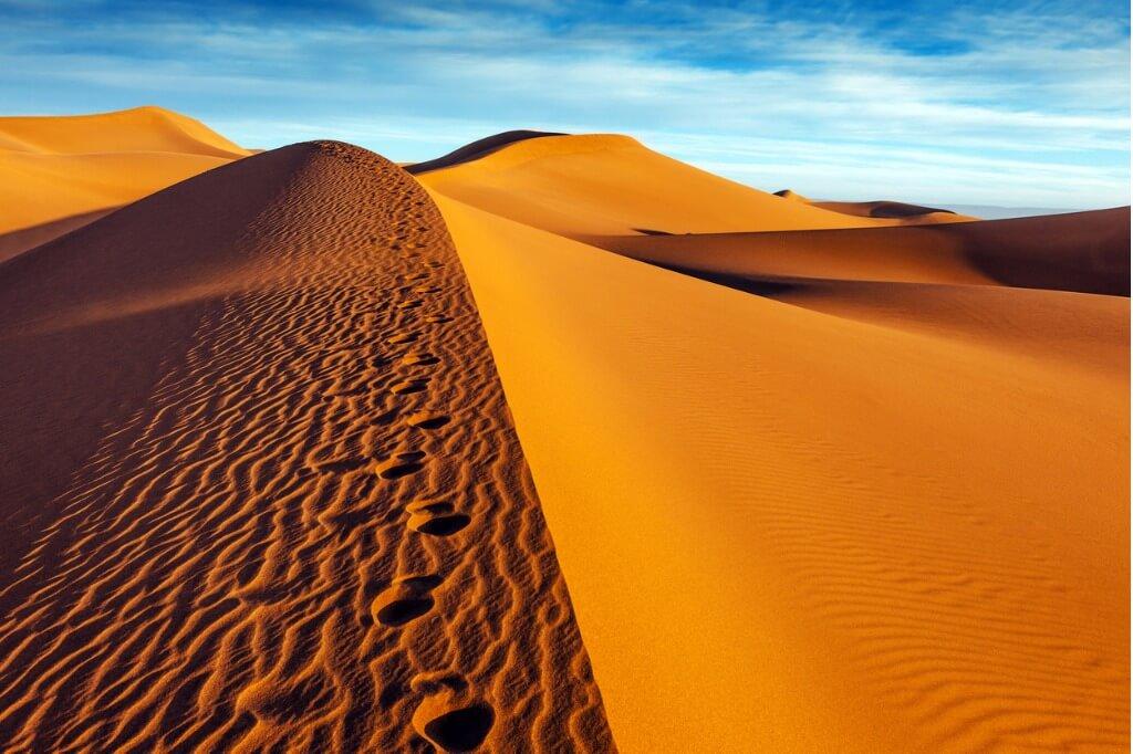 Viaje a Marrakech, Desierto Zagora