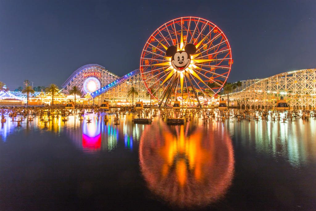 Nochevieja en Disneyland, Vista panorámica Disneyland