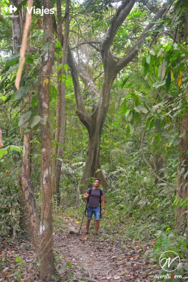 Caminando por Tayrona