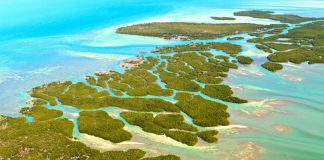 El mejor viaje a EE.UU, Cayos Florida