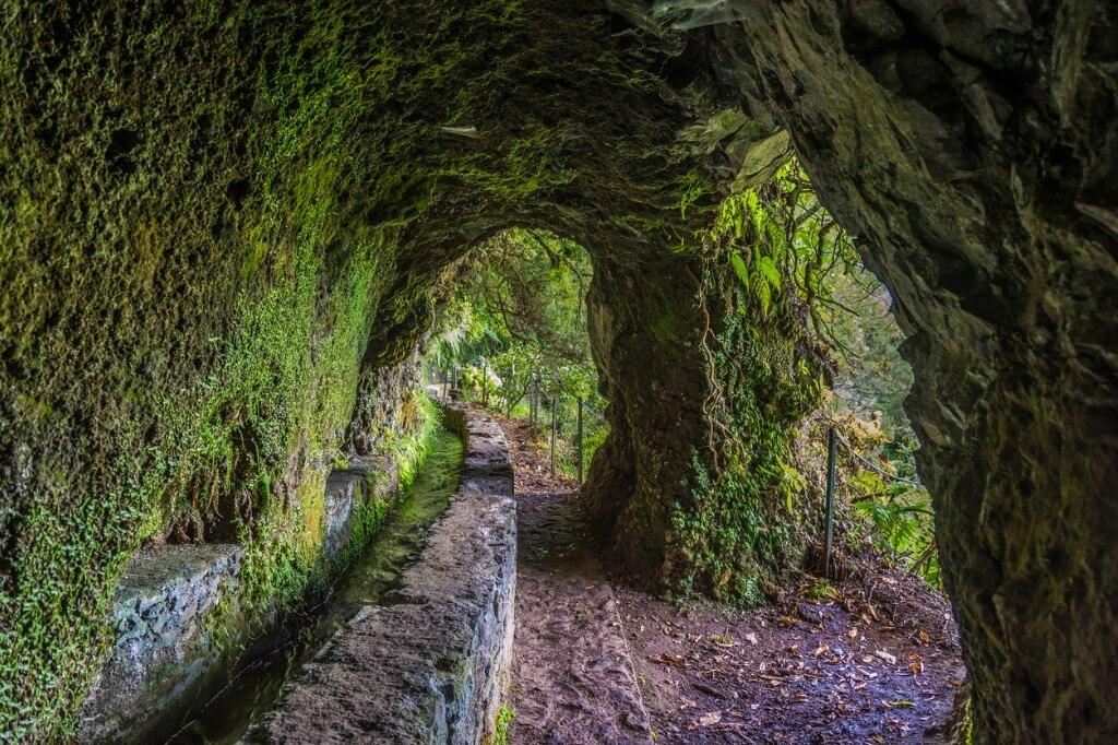 Viajar a Portugal, Levada Pasos Madeira