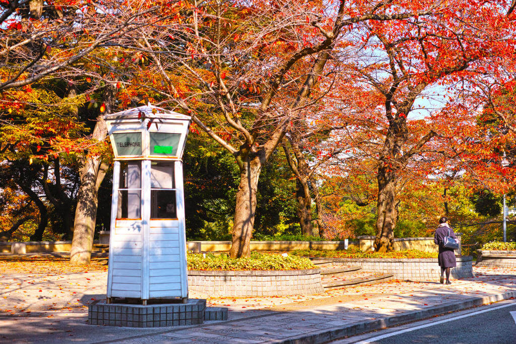 Visitar Madrid, Cabina telefónica Tokyo
