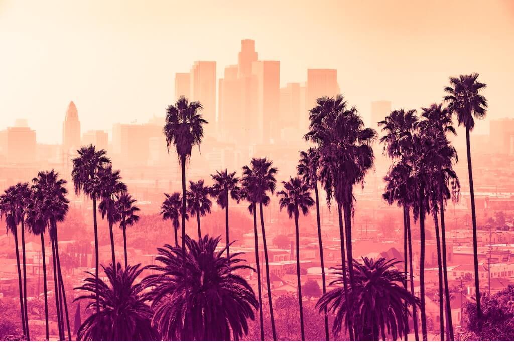 Vuelos a Los Ángeles, Palmeras