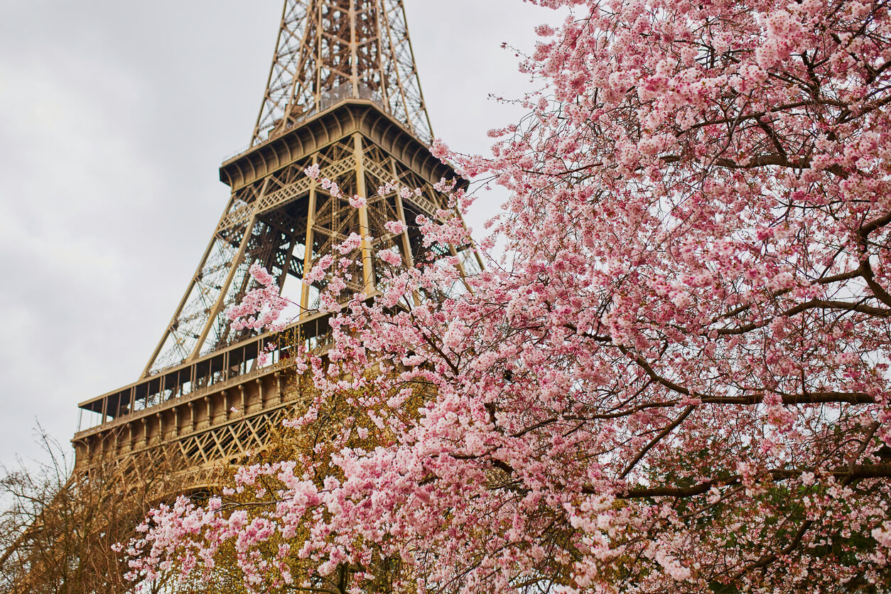 Paris en Primavera 1