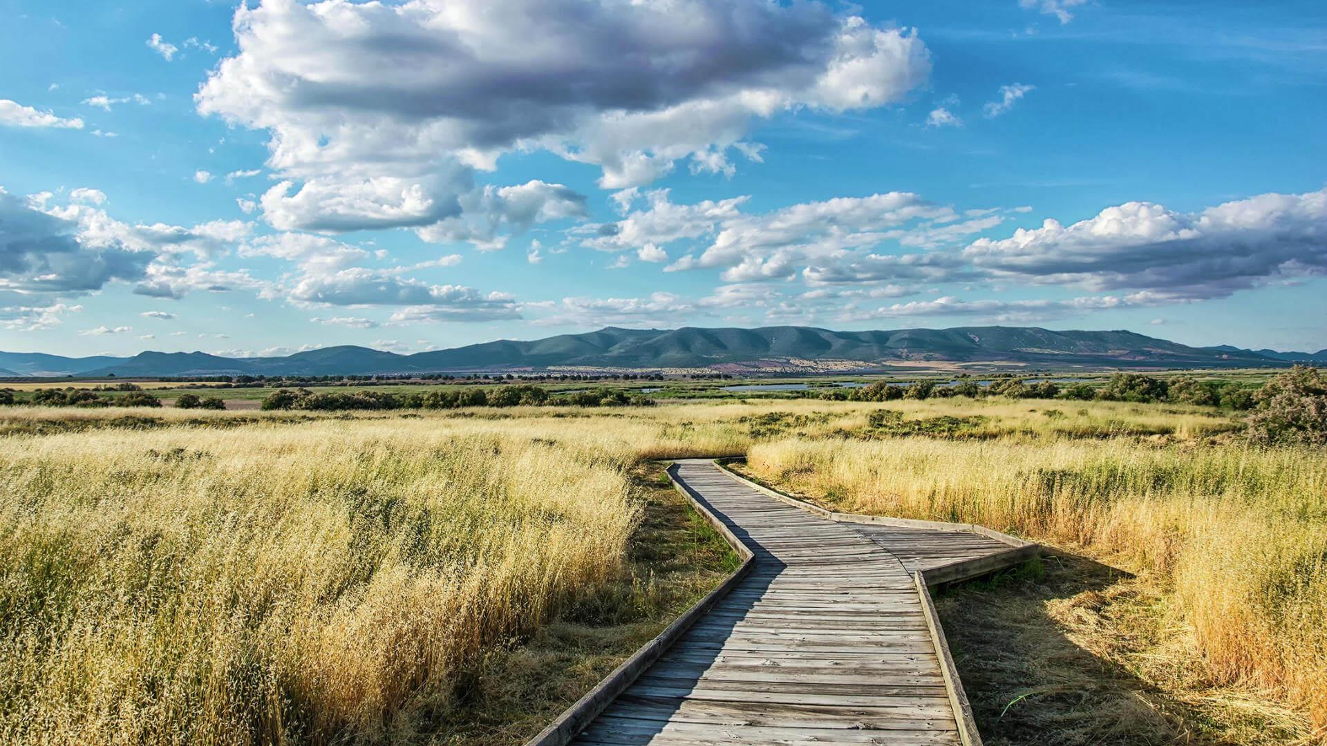 Mejores Parques Nacionales, Tablas de Daimiel