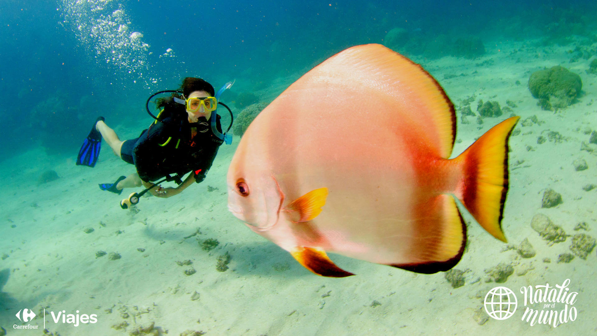 Gran barrera de coral australiana Viajes Carrefour 17 1