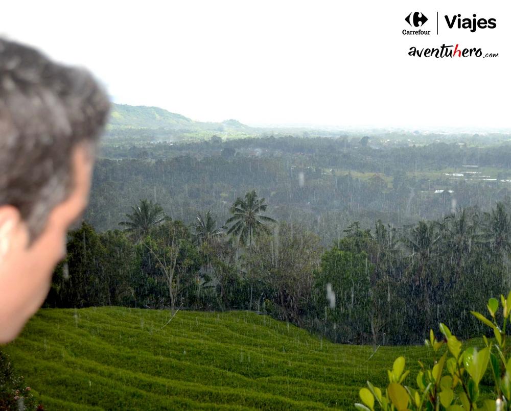 Lluvia en los arrozales