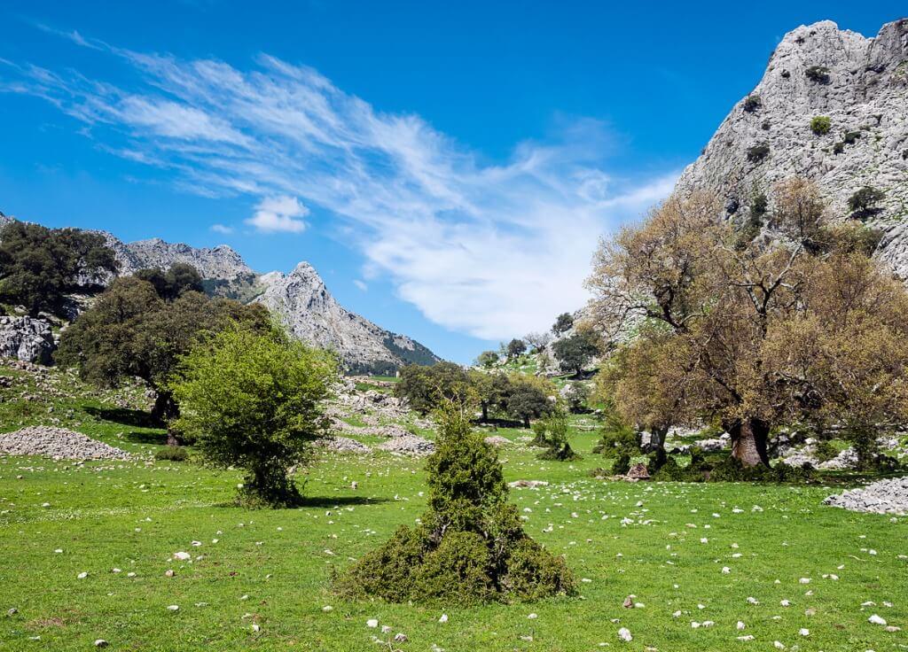 Mejores Parques Nacionales, Grazalema