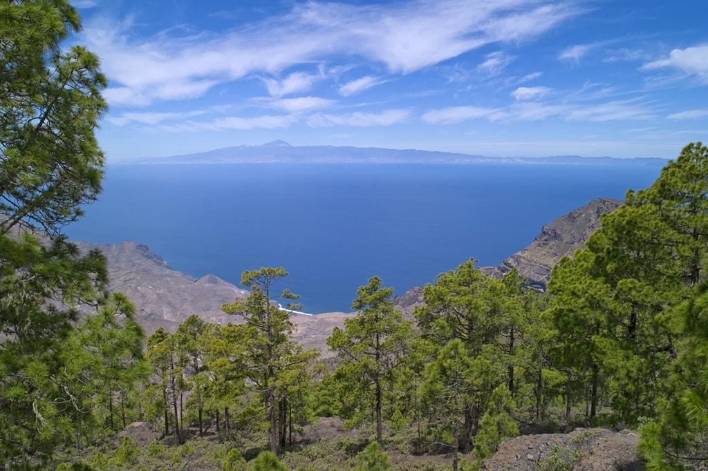 Parque Natural Tamadaba