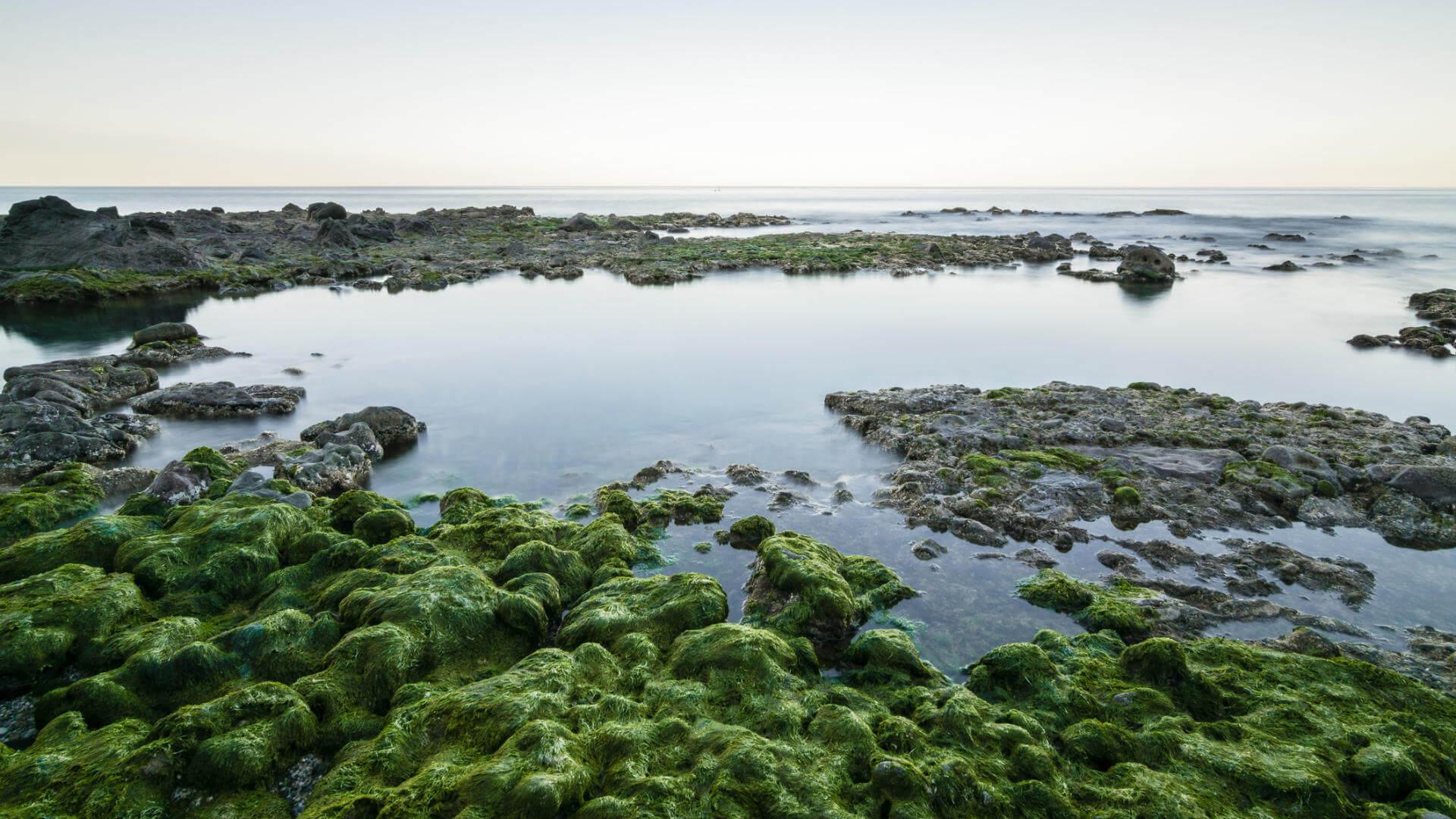 playas vigenes espana playa muertos