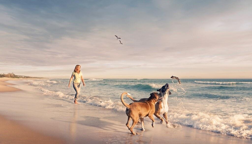 Vacaciones playa, Caminando por la orilla