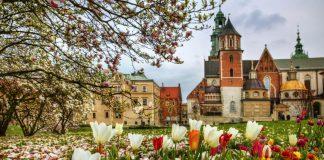 Destinos baratos, Cracovia