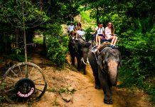 Viajes exóticos, Paseo en elefante