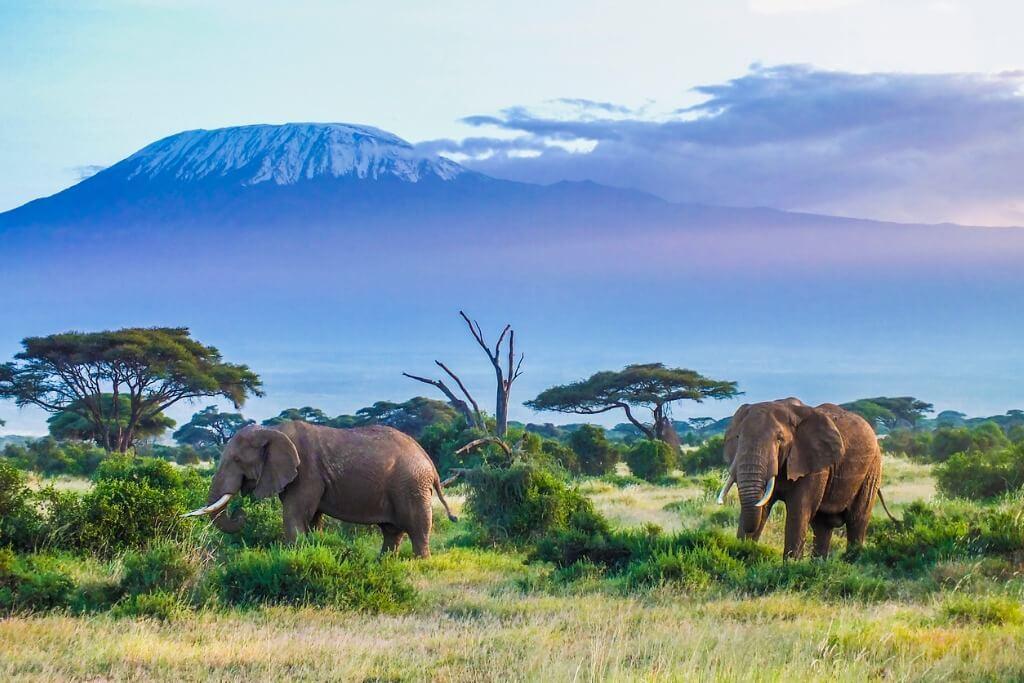 Kilmanjaro, Tanzania