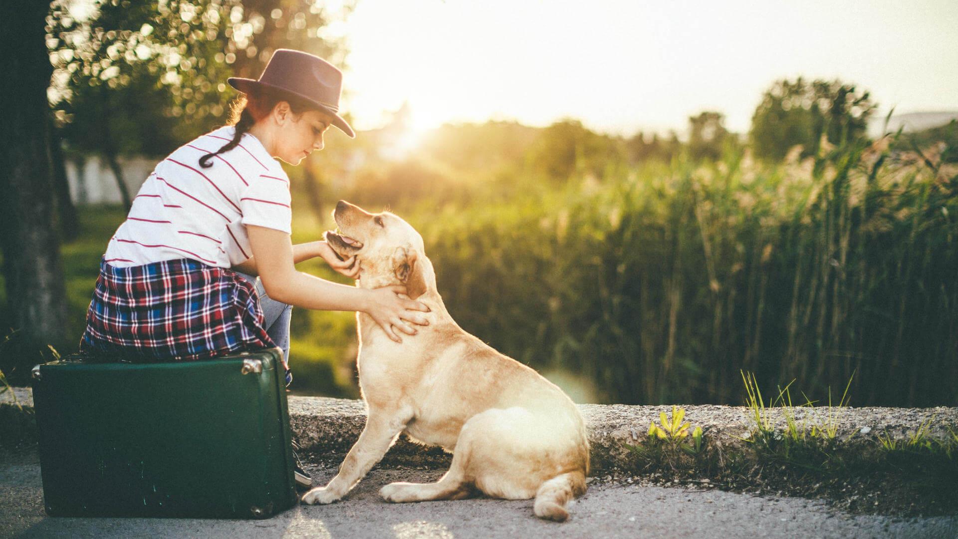 joven viajando con perro