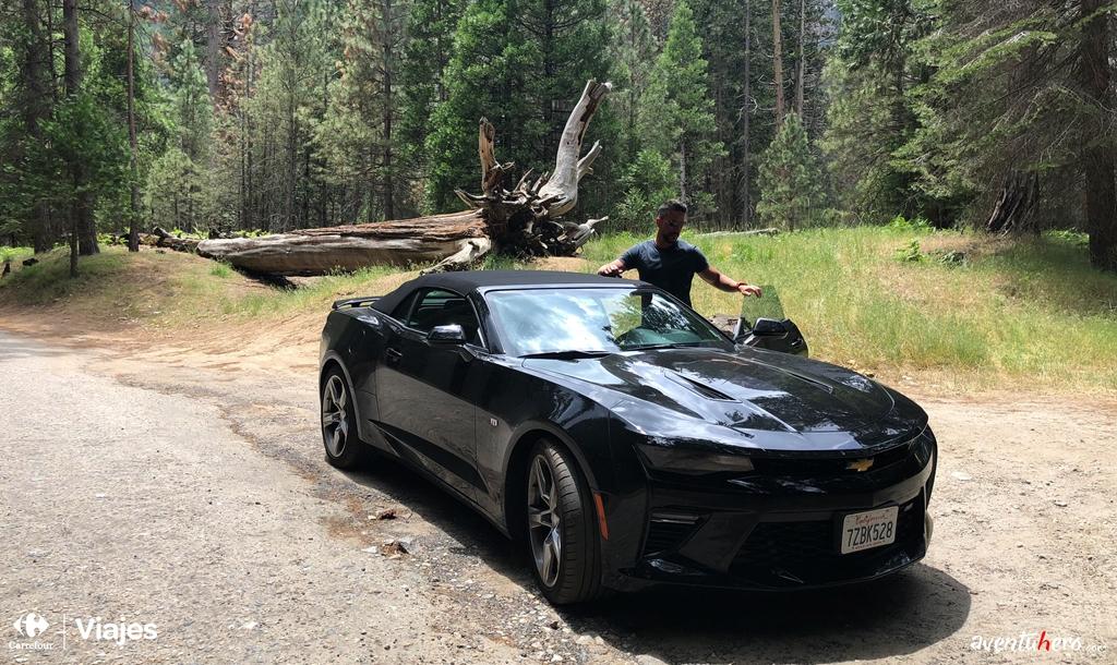Coche en Yosemite