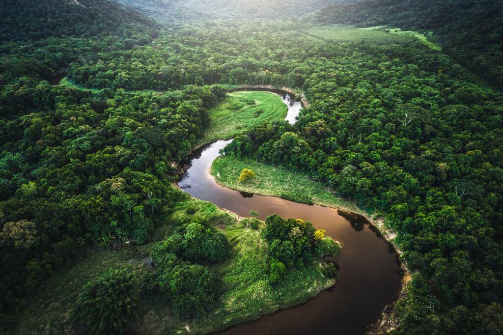 Selva Amazonas, Brasil