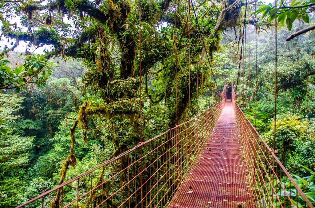 Puente Monteverde, Costa Rica