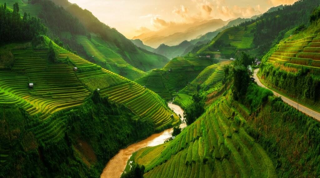 Campos de arroz, Vietnam