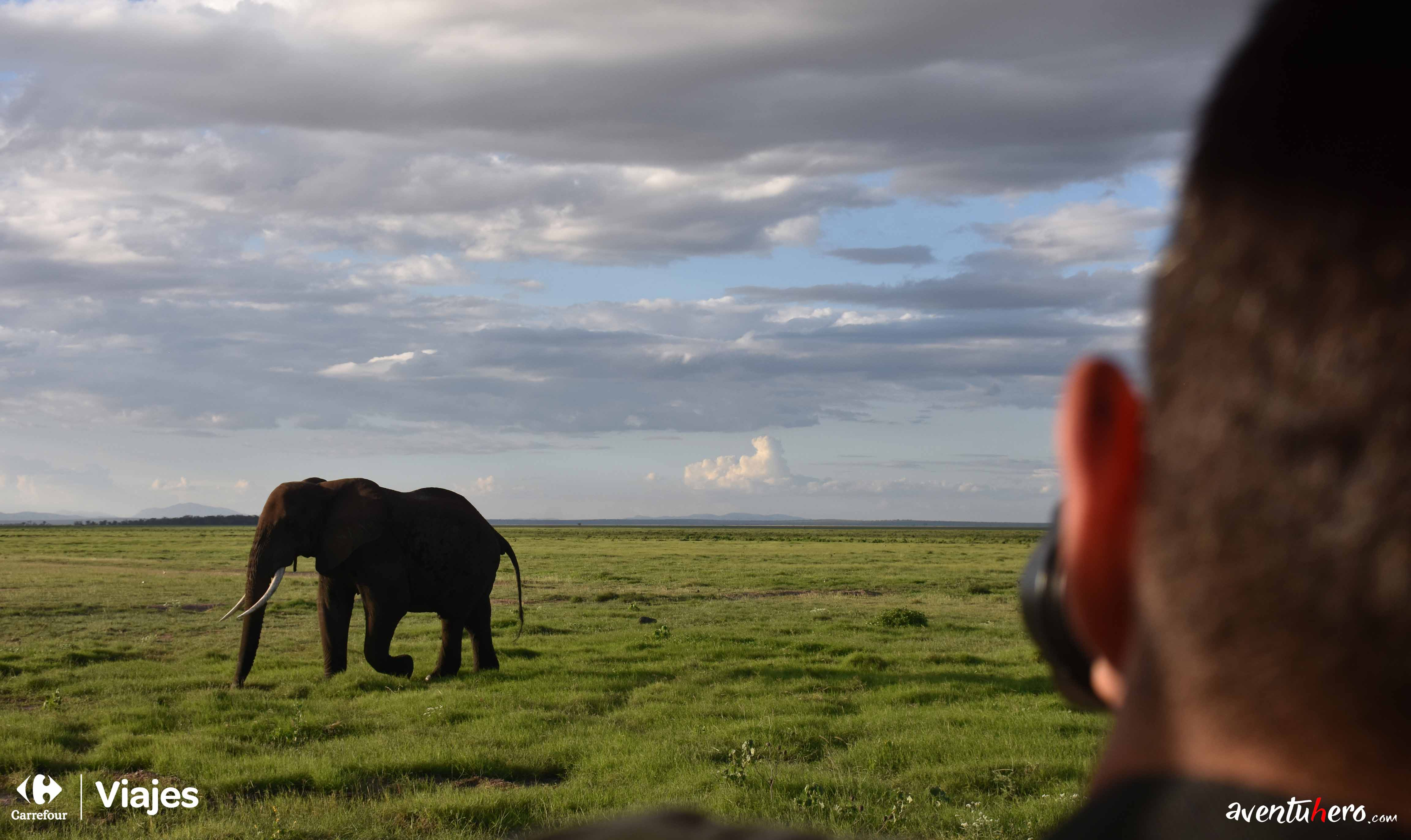 aventuhero fotografiando a un elfante en la reserva Amboseli