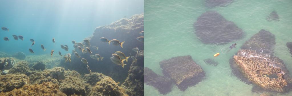 buceo en el algarve de portugal